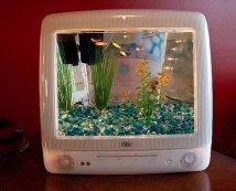 http://1.lushome.com/wp-content/uploads/2012/01/fish-tanks-aquariums-plastic-recycling-macquarium-2.jpg