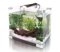 http://www.thinkfish.co.uk/250-wide-images/small-aquarium.jpg