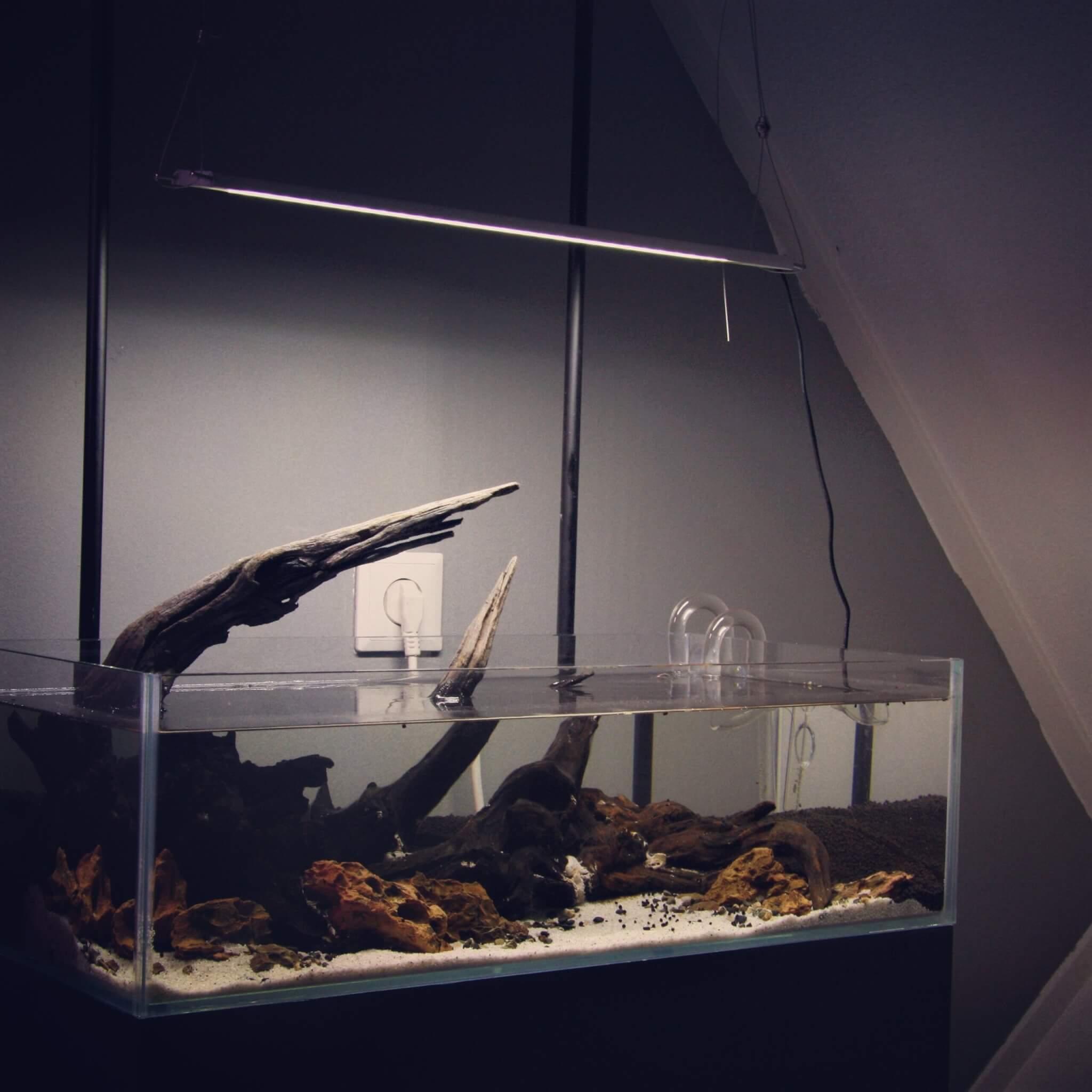 Aquarium dark start