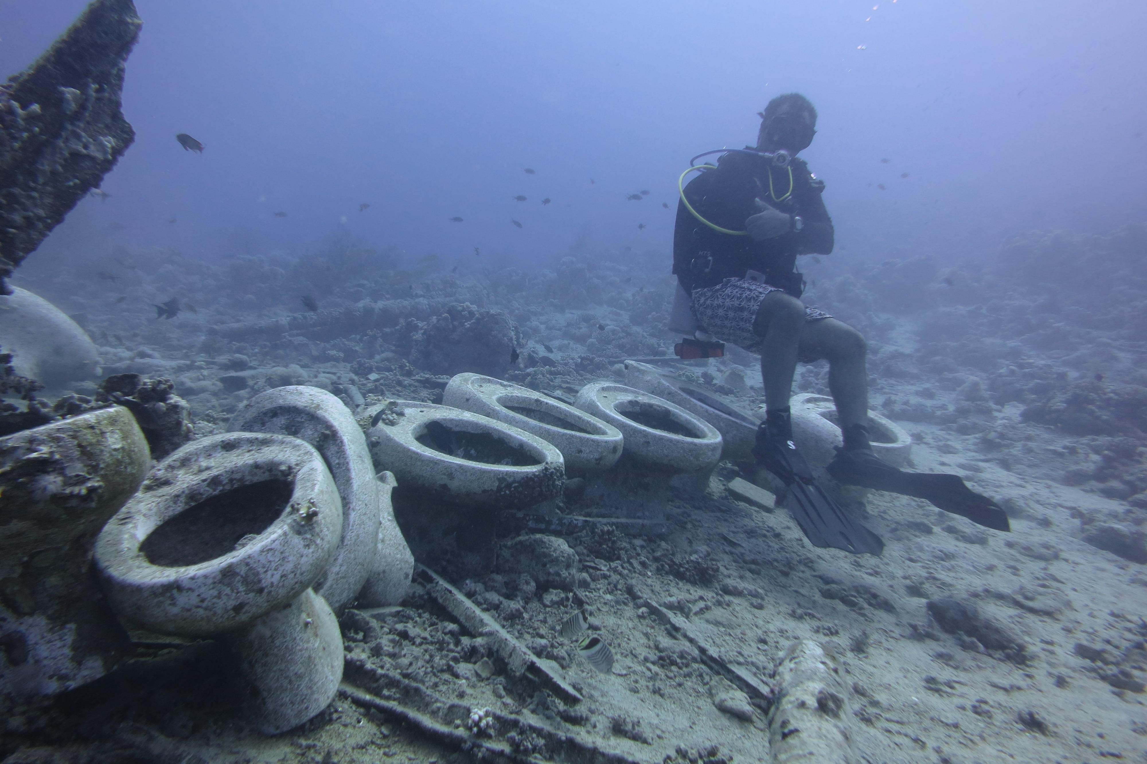 Shark Amp Yolanda Reef Aquarius Diving Club