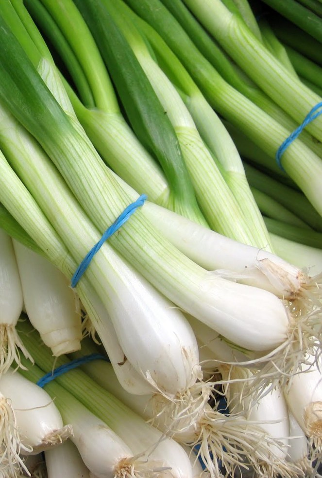 Ramps, essentially wild onions, have a very short life of six weeks, beginning at the end of April. Similarly, spring onions are available during the season's early months as they are pulled before they turn into conventional onions. Photo by: Creative Commons.