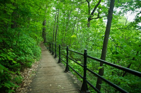 One of the trails in Mount Royal.