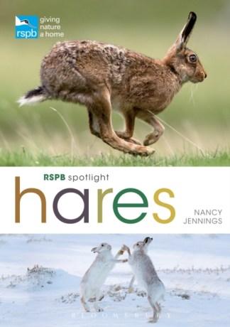 RSPB Spotlight Hares