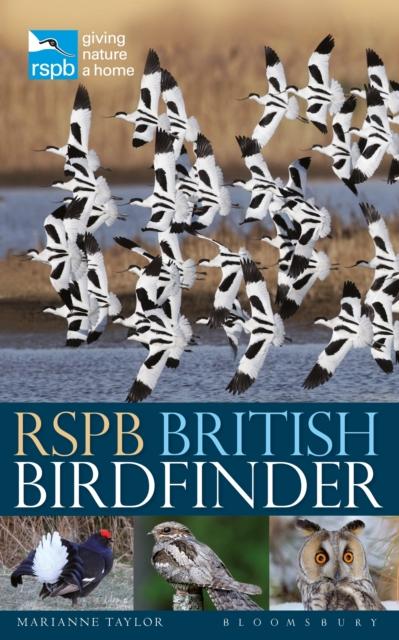 British Birdfinder
