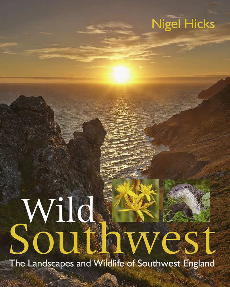 Wild Southwest - books