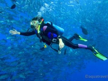Potápění na Bali. Fascinující setkání s kranasy.