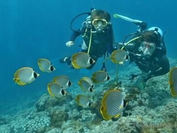 Potápění s dětmi na Bali v Tulambenu