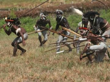 Dani bojovníci