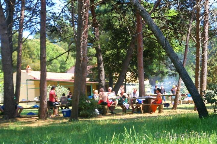 Veruda posezení u grilů pod borovicemi