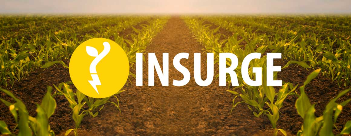 InSurge Logo on a field of crops