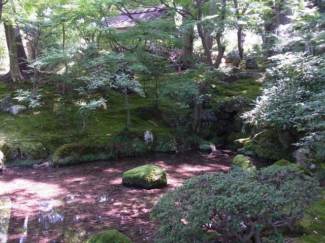 池の真ん中に苔生した石