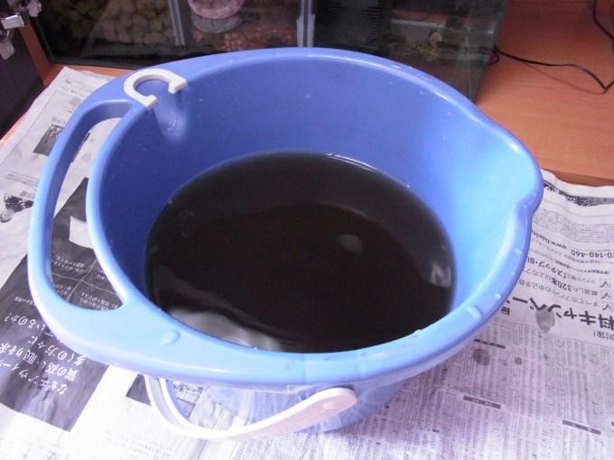 濾材をすすぎ洗いしたあとの飼育水がめちゃくちゃ汚い