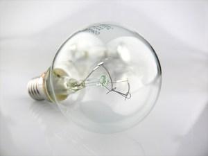 白熱電球・蛍光灯の製造禁止?爬虫類/アクアリウム照明の未来