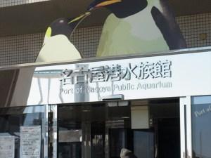 名古屋港水族館行ってきた!シャチやイルカのショーは必見!