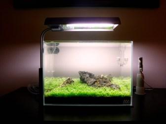 水草水槽の秘訣はCO2!高圧ボンベや発酵式などCO2の添加方法まとめ