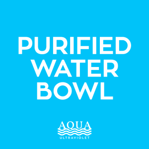 Purified Water Bowl