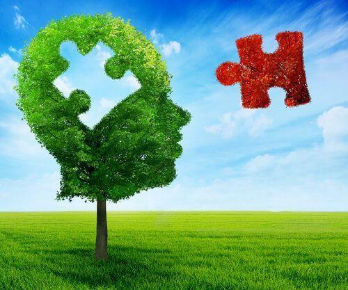 ADNe, nuevas innovaciones en el mentoring