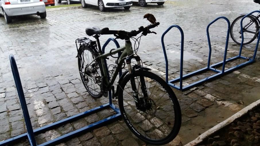 02.Aquela_que_Pedala_O_passaro_e_a_bicicleta_Luciana_Vieira