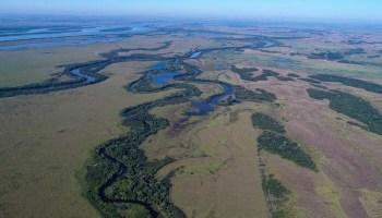 Parque Estadual das Várzeas do Ivinhema