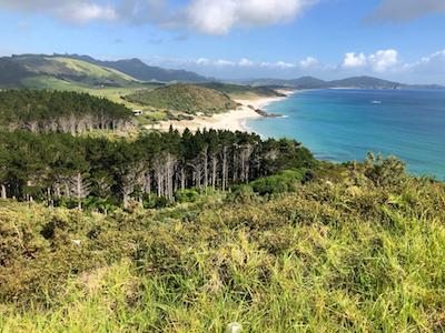Costa y playas de Ocean Beach