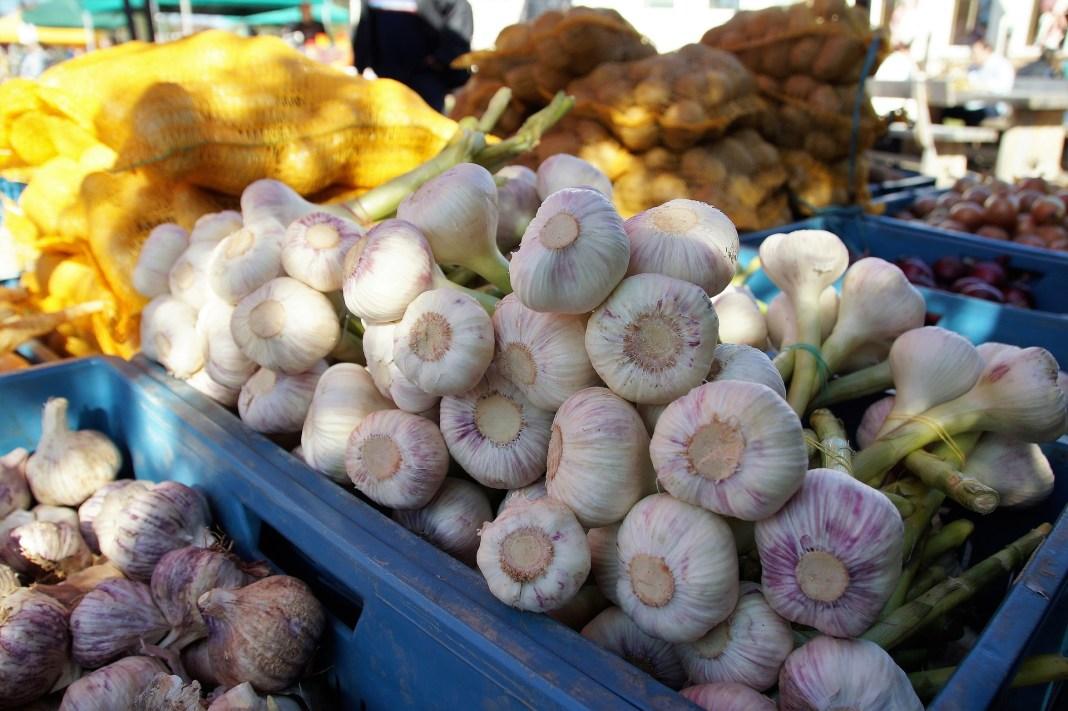 Foto verdura en cajas