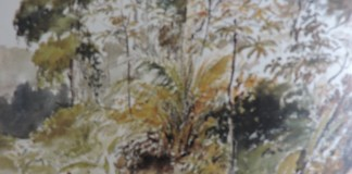 Pissarro Linde de bosque acuarela