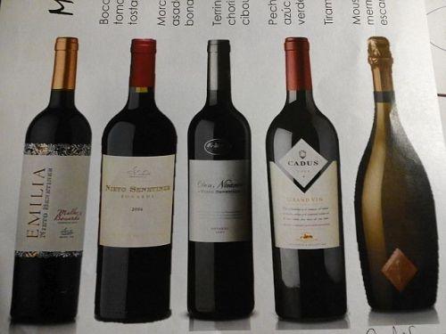 bonarda vinhos
