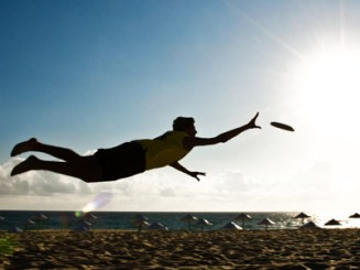 diving_into_the_sun