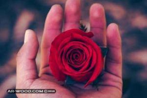 علامات الحب الحقيقي عند الرجل في علم النفس