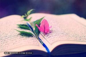 تفسير الجن في المنام وقراءة القران
