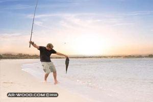 افضل ايام الصيد من الشاطئ