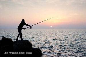 افضل وقت لصيد السمك من الشاطئ