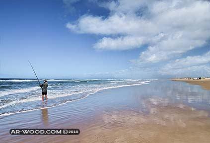 صيد السمك بالسنارة من الشاطئ