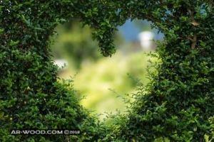 رسائل حب باللهجة الجزائرية الدارجة