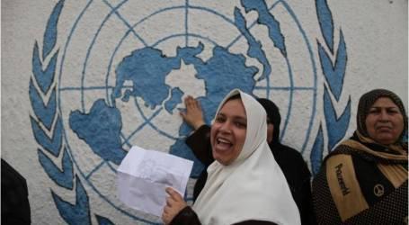 """حماس: تصريح """"روجرز"""" يؤكد الضغوط الدولية لإنهاء """"أونروا"""""""