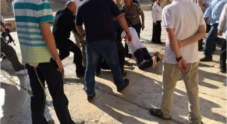 الاحتلال يعتقل رئيس لجنة إعمار المسجد الأقصى