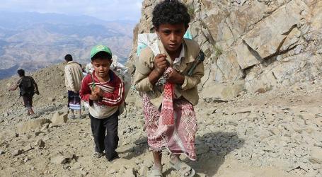نزوح أكثر من 50 ألف أسرة يمنية من الحديدة بسبب الحرب