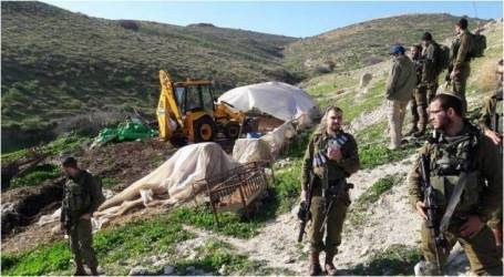 مستوطنون يعتدون على رعاة فلسطينيين بالأغوار الشمالية