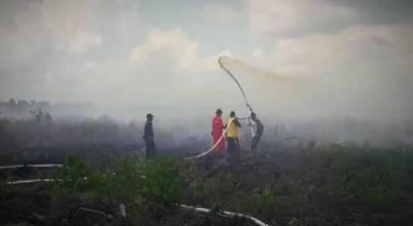 وكالة كوتاوارين تيمور لتخفيف الكوارث تحتاج إلى طائرات هليكوبتر لدعم جهودها لإطفاء حرائق
