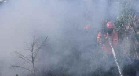 حريق يدمر الهكتارات من أراضي الخث على مشارف بيكانبارو