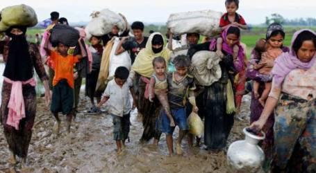 ميانمار:10  منظمات دولية تدعم غامبيا في محاكمة ميانمار بشأن إبادة الروهنغيا