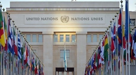 الأمم المتحدة: مقتل 10 مدنيين في قصف على سوق شمالي اليمن
