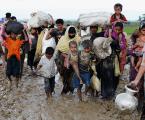 الأمم المتحدة: لم نشارك في خطط إبعاد الروهينغا لجزيرة