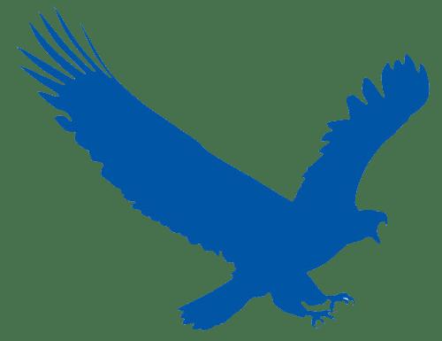 ايجل جيت برنامج التحميل EagleGet