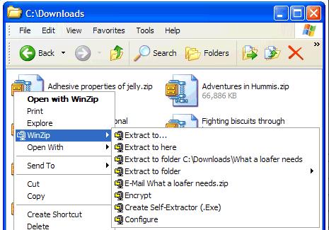 تحميل برنامج Winzip - تحميل برنامج فك الضغط