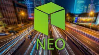 شبكة النيو (NEO)