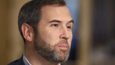 الرئيس التنفيذي لشركة الريبل يدافع عن عملة (XRP) الرقمية