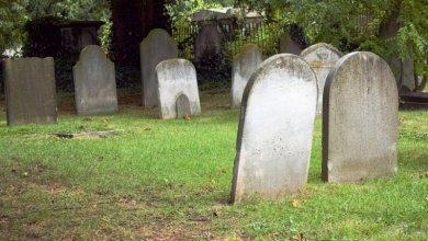 كم عدد العملات المشفرة التي ماتت في سنة 2019؟