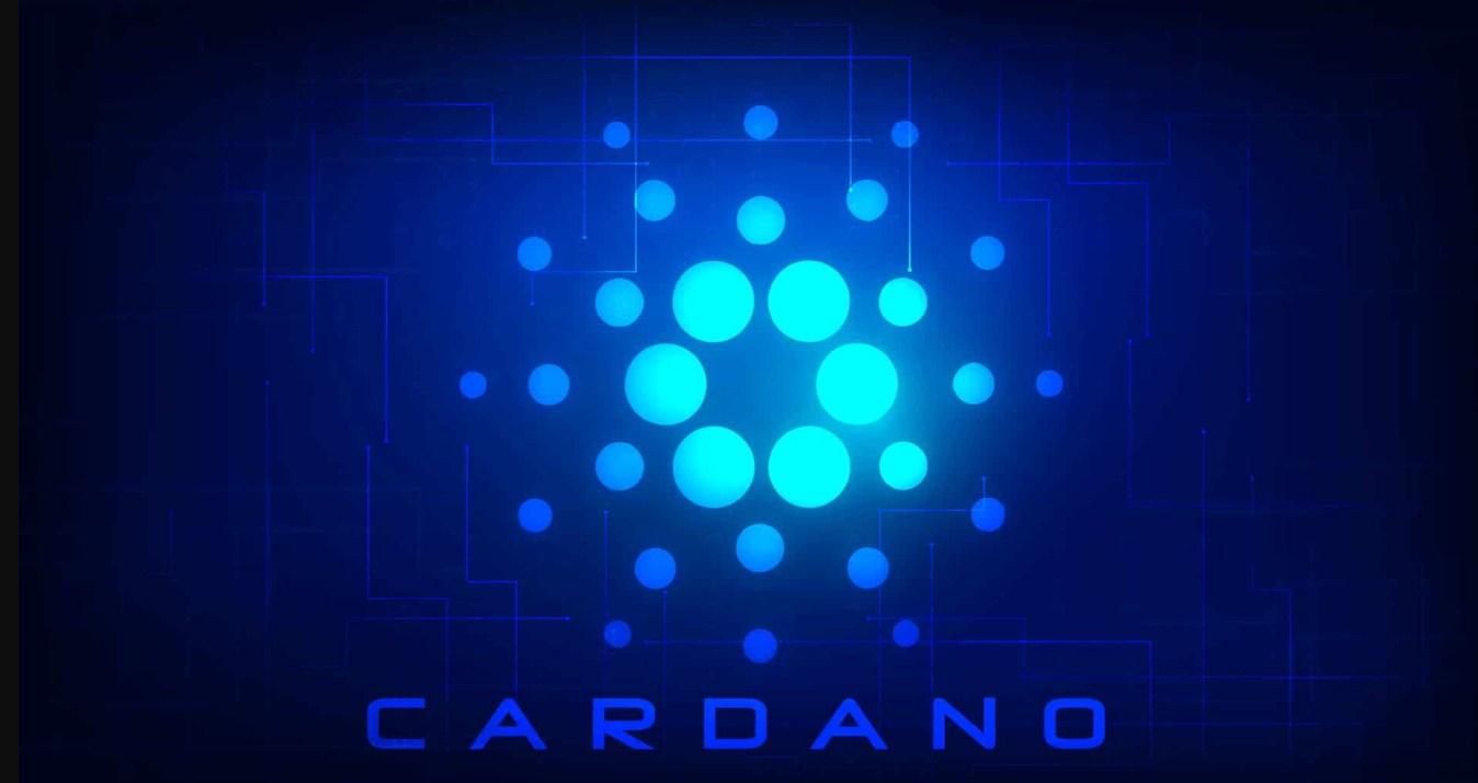 كاردانو تعلن عن تحديثات رئيسية وصفقتها مع شركة الاتصالات التنزانية مازالت جارية