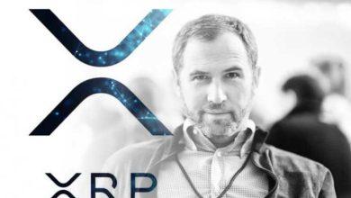 مؤسس الريبل: نحن شركة ربحية ولا حل في الأفق إلاّ عبر بيع عملات XRP الرقمية